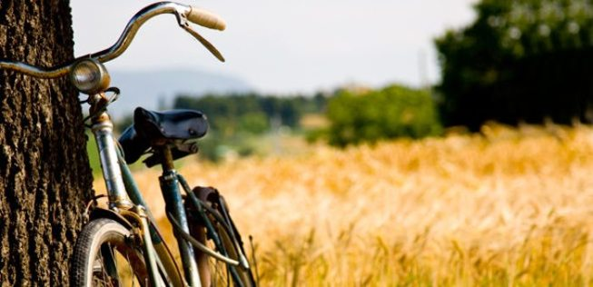 Bicicleta de campo